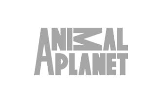 Animal-Planet-logo-grey